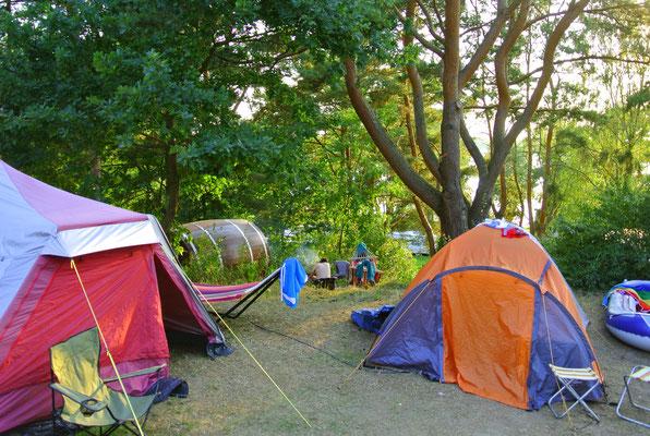 Blick vom Platz 40 (daneben 40a und 39) auf Schlaffass 4 (liegt eine Terrasse tiefer, kann aber ideal kombiniert werden, wenn neben Gäste im Schlaffass Freunde mit eigenem Zelt/Bus stehen  © Naturcamping Zwei Seen am Plauer See/MV - www.zweiseen.de