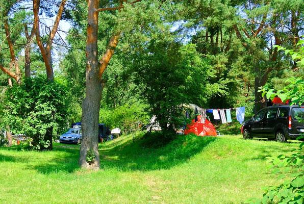160er Terrassenplätze mit Seeblick © Naturcamping Zwei Seen am Plauer See/MV - www.zweiseen.de