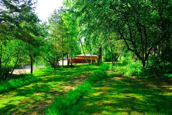 Unsere idyllischen Zeltterrassen, schön eingewachsen und nah zum Sanitärhaus © Naturcamping Zwei Seen am Plauer See/MV - www.zweiseen.de