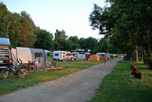 Die große Camperwiese am Hafen, Blick Stellplätze 223 - 231 © Naturcamping Zwei Seen am Plauer See/MV - www.zweiseen.de