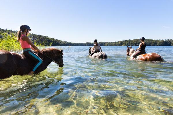 Auf dem Rücken der Pferde liegt das Glück der Erde: Das Bild von den jungen Reiterinnen des Pferdehofs Zislow hat Fotografin Sylvia Pollex am Plauer See aufgenommen.