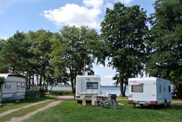 Plätze 230-232 © Naturcamping Zwei Seen am Plauer See/MV - www.zweiseen.de