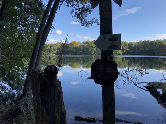 Der Große Pätschsee | © Bild: Naturcamping Zwei Seen GmbH, www.zweiseen.de