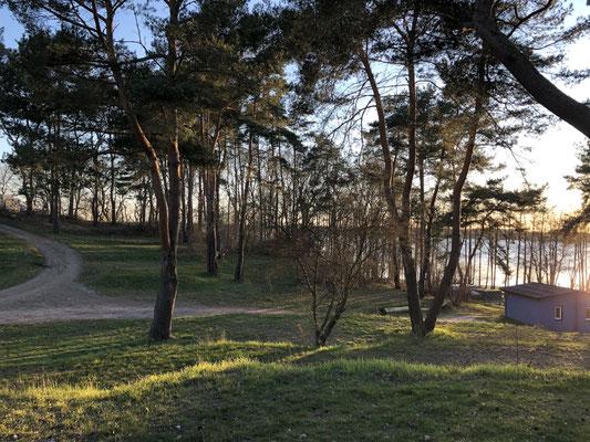 Blick von der terrassierten 160er-Plätzen auf die gegenüberliegenden 8x-Plätze bis hin zum Ufer © Naturcamping Zwei Seen am Plauer See/MV - www.zweiseen.de