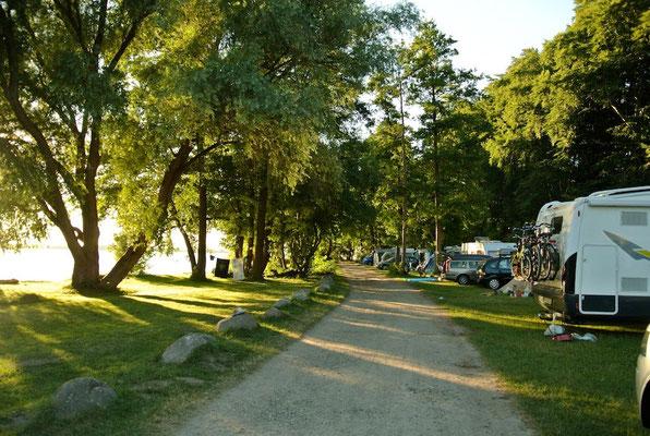 Die sonnige Camperwiese am Bootshaus (40/50er Bereich) © Naturcamping Zwei Seen am Plauer See/MV - www.zweiseen.de