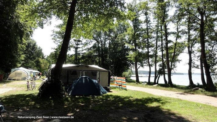Schattige Plätze direkt am See im 60er Bereich © Naturcamping Zwei Seen am Plauer See/MV - www.zweiseen.de