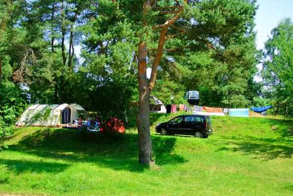 Campen wie im Kino - mit aufsteigenden Wiesenterrassen - Blick auf 160er-Plätze © Naturcamping Zwei Seen am Plauer See/MV - www.zweiseen.de