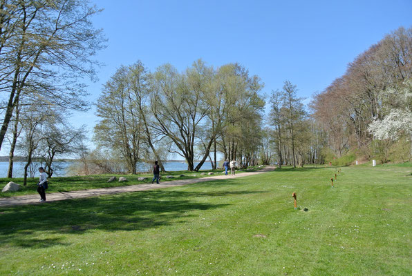 Frühlingshafter Blick auf 40er-Plätze © Naturcamping Zwei Seen am Plauer See/MV - www.zweiseen.de