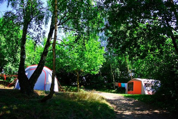 Zeltplätze 6, 7 und 10 © Naturcamping Zwei Seen am Plauer See/MV - www.zweiseen.de