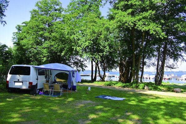 Die M-Plätze 21-29 direkt am Ufer mit Blick auf die Marina © Naturcamping Zwei Seen am Plauer See/MV - www.zweiseen.de