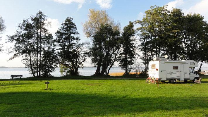 Die große Camperwiese am Hafen, Stellplätze 228, 227, davor 234, 235 (Wohnmobil) © Naturcamping Zwei Seen am Plauer See/MV - www.zweiseen.de