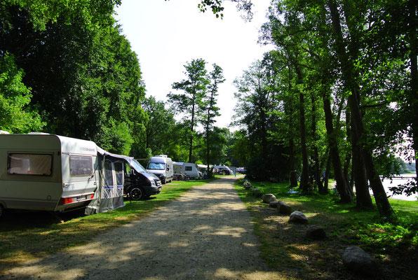 Blick auf die 60/50er-Plätze in Richtung Bootshaus © Naturcamping Zwei Seen am Plauer See/MV - www.zweiseen.de