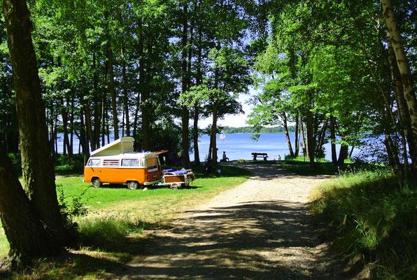 Blick auf die 70er-Plätze am See (Bus steht auf 73) © Naturcamping Zwei Seen am Plauer See/MV - www.zweiseen.de