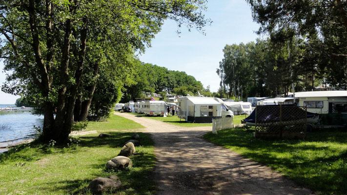 Camperwiese am See/Marina/Slipanlage, nah zum Sanitärhaus 2 (230er Stellplätze) © Naturcamping Zwei Seen am Plauer See/MV - www.zweiseen.de