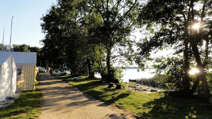 Die 230er Plätze am Hafen © Naturcamping Zwei Seen am Plauer See/MV - www.zweiseen.de