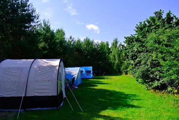 Plätze 436 - 439 in einer privaten Reihe, schön eingewachsen © Naturcamping Zwei Seen am Plauer See/MV - www.zweiseen.de