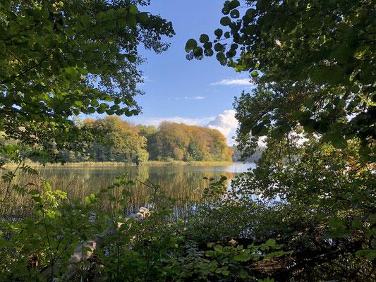 Größer Pätschsee / Mecklenburgische Seenplatte | © Bild: www.ZweiSeen.de