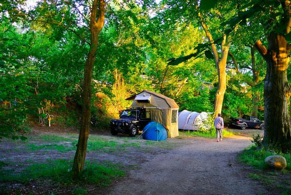 Plätze 117 bis 121 direkt am See © Naturcamping Zwei Seen am Plauer See/MV - www.zweiseen.de