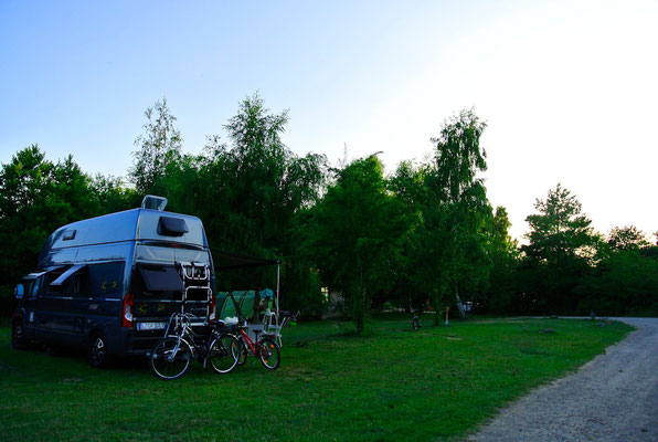 Plätze 364 - 367 auf einer schönen Birkenwiese am Sanitärhaus mit kurzem Trampelpfad zum See © Naturcamping Zwei Seen am Plauer See/MV - www.zweiseen.de