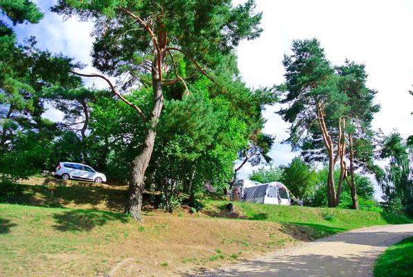 Blick auf die 160er-Terrassenplätze © Naturcamping Zwei Seen am Plauer See/MV © Naturcamping Zwei Seen am Plauer See/MV - www.zweiseen.de