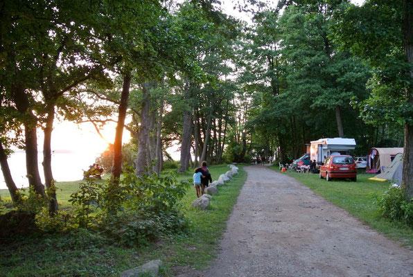 Die Camperwiese am Bootshaus (40/50er Bereich) © Naturcamping Zwei Seen am Plauer See/MV - www.zweiseen.de