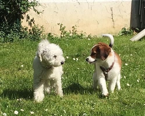 Amelie und Freund