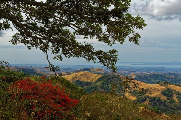 Landschaft südwestlich von Monteverde
