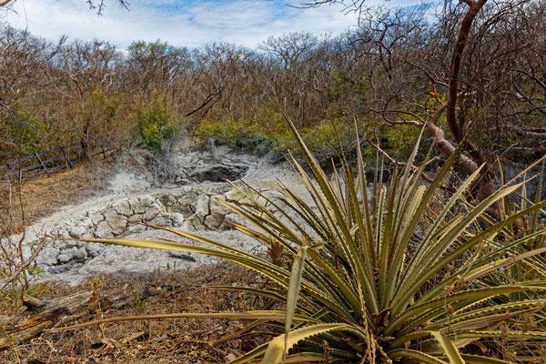 Rincón de la Vieja Geothermale Zone