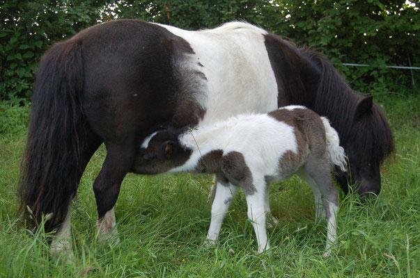 Avec Piliany sa maman