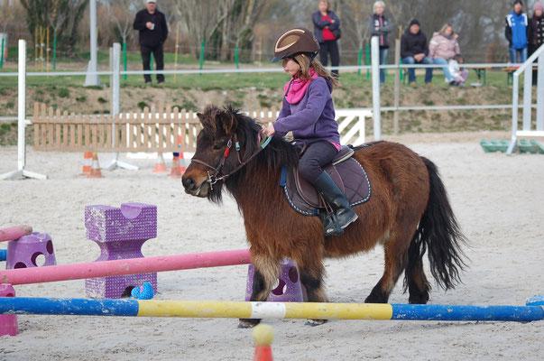 Valmy De Liberty - Domaine Equestre Du Theil