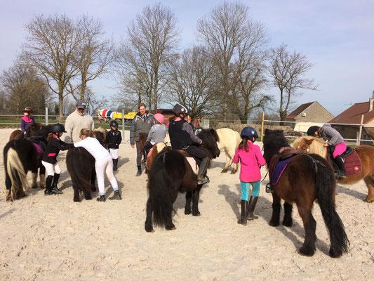 Domaine Equestre Du Theil