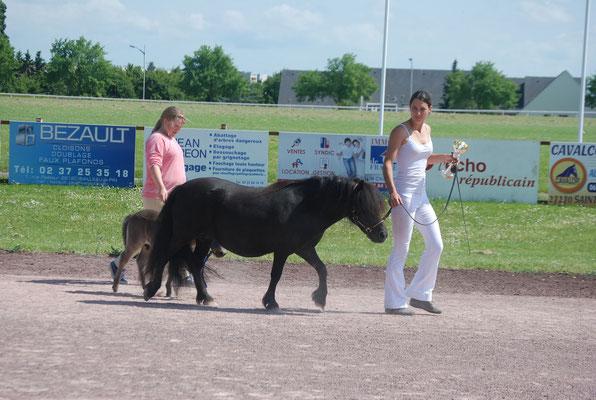 Concours de Chartres, 8 juin 2014