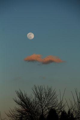 Mondaufgang, 8.3.2020