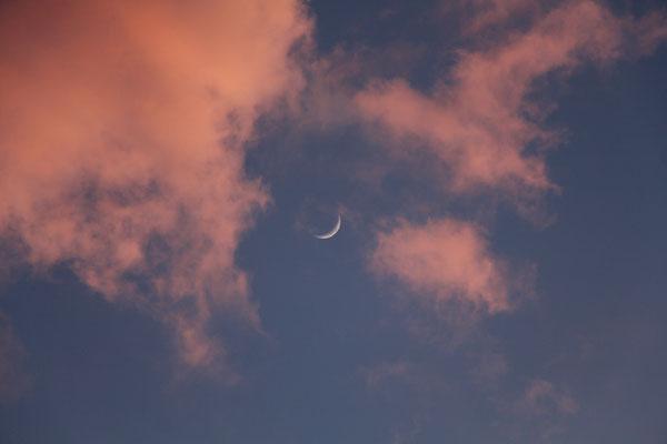 Mondsichel zwischen rosa Wolken, 28.3.2020