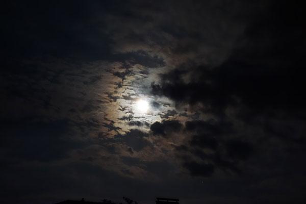 "Mond mit farbigem ""Hof"" (Korona), 29.5.2018"