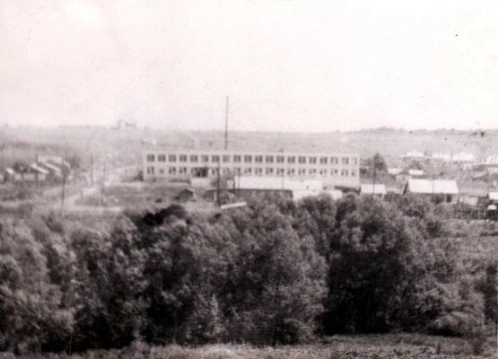 Школа. 1981 год