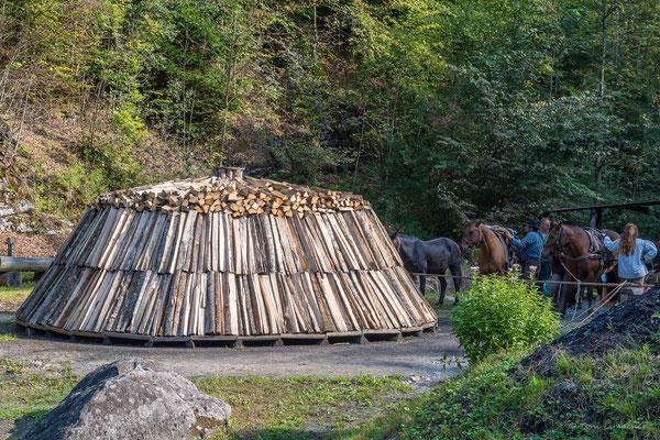 Das Holz ist zum Köhlern bereit.