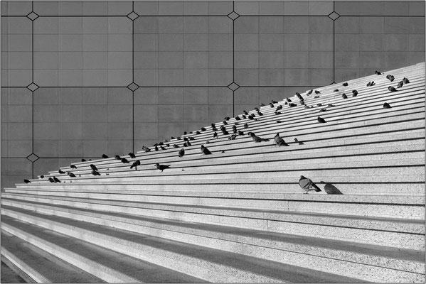 Scalinata de La Grande Arche de La Défense - © Massimo Vespignani