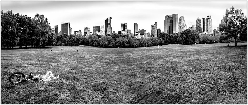 New York City: Central Park (collage) - © Massimo Vespignani