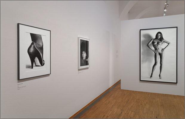 Vienna: Museo Albertina, collezione di opere fotografiche, settore Helmut Newton - © Massimo Vespignani