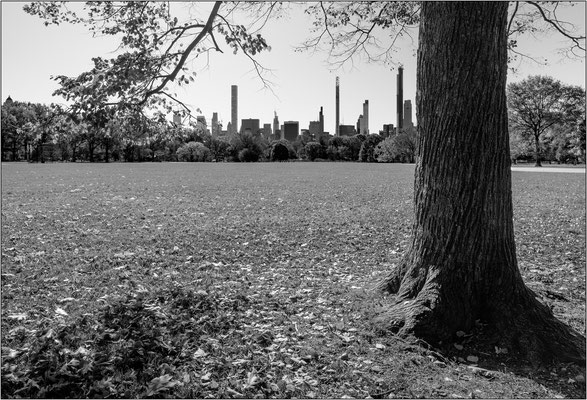 The Great Lawn all'interno di Central Park - © Massimo Vespignani