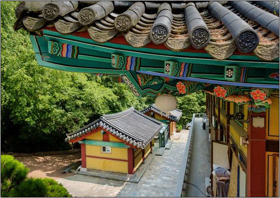 Uiwang-Si: tempio buddista Cheonggyesa - © Massimo Vespignani