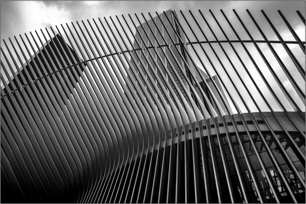 New York City: strutture metalliche esterne del modernissimo hub ferroviario al World Trade Center - © Massimo Vespignani