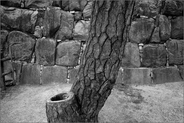 Castello Nijō - © Massimo Vespignani