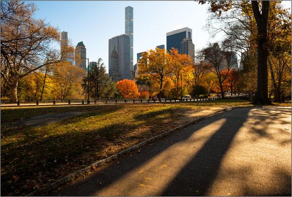 Central Park - © Massimo Vespignani