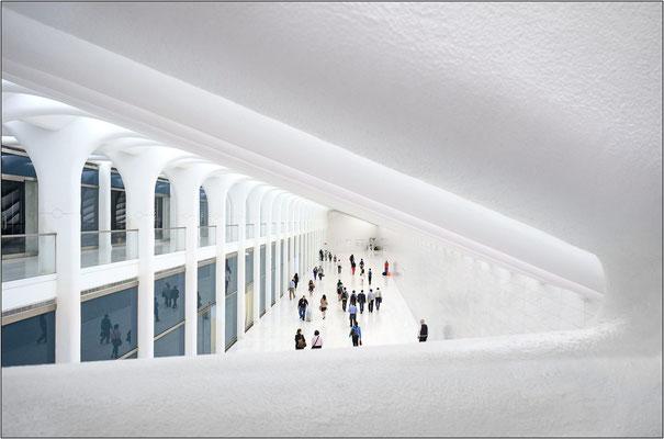New York City: il nuovo hub ferroviario al World Trade Center, opera dell'architetto spagnolo Santiago Calatrava - © Massimo Vespignani