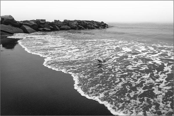 Coney Island: spiaggia - © Massimo Vespignani