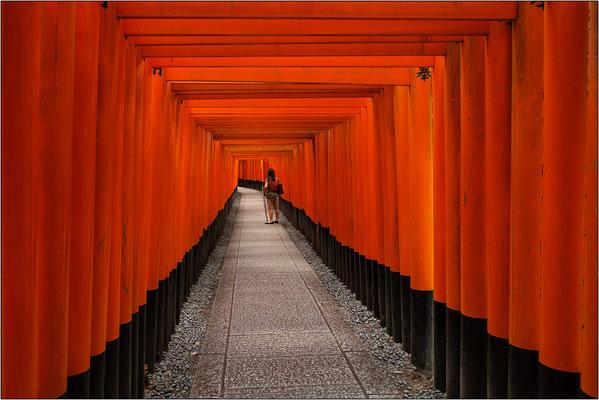 Le porte torii a Fushimi Inari-taisha - © Massimo Vespignani