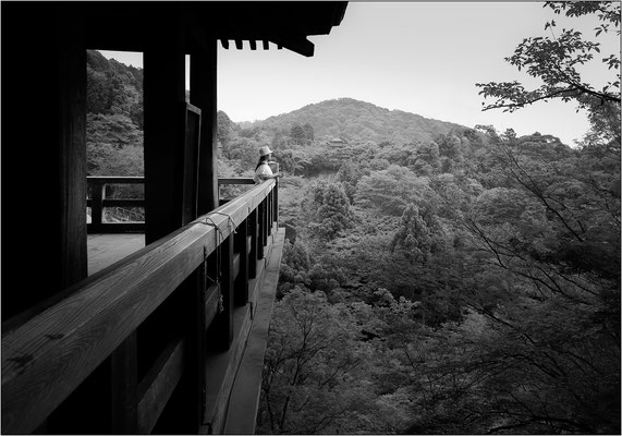 Kiyomizu-dera - © Massimo Vespignani