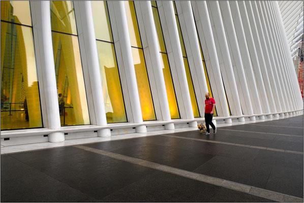 New York City: strutture esterne del nuovo e modernissimo hub ferroviario al World Trade Center, opera dell'architetto Santiago Calatrava - © Massimo Vespignani